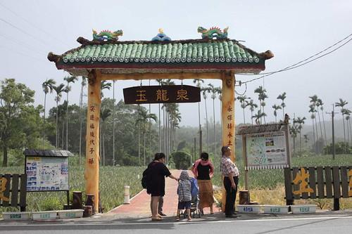台東縣鹿野鄉周邊景點吃喝玩樂懶人包 (11)