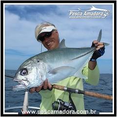 Ian-Arthur em mais uma pescaria no Panamá.  #pescaesportiva #pescaesportiva #pesqueesolte #pescaria #panama #fishing #fish #baitcast #shimano #flyfishing #catchandrelease