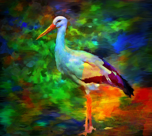 Fauvist Feathered Friend