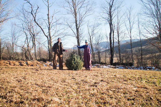 Planting Our Christmas Tree_12