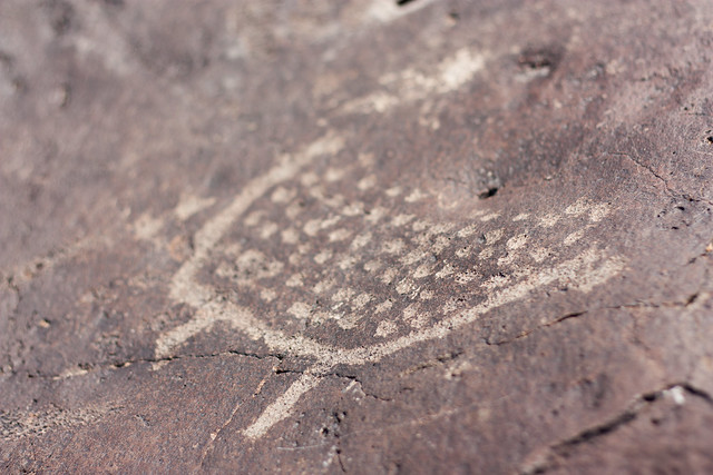 Snake River Paiute Petroglyphs