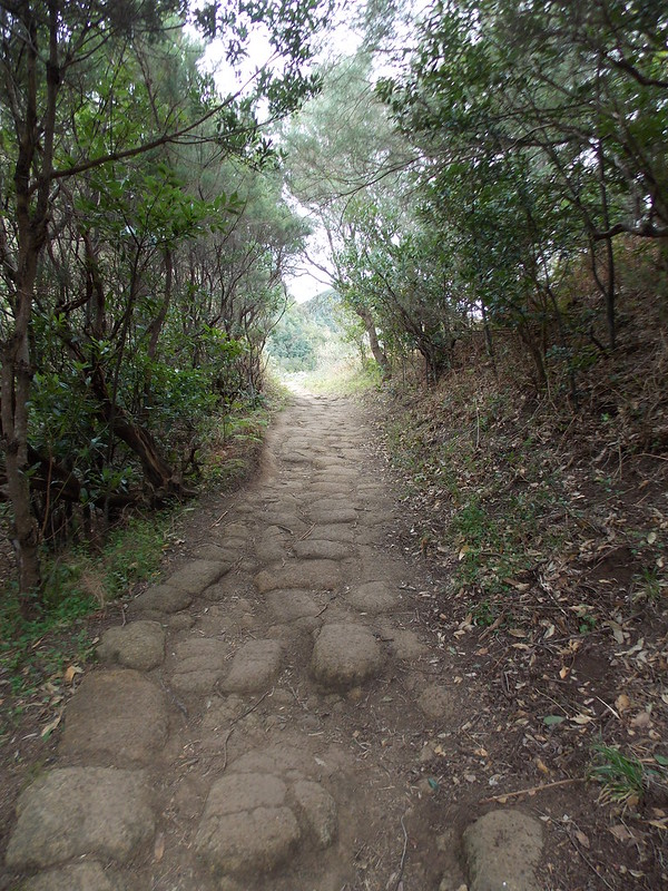 Anaga Hiking (83)