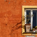 Window on Red by dirac3000