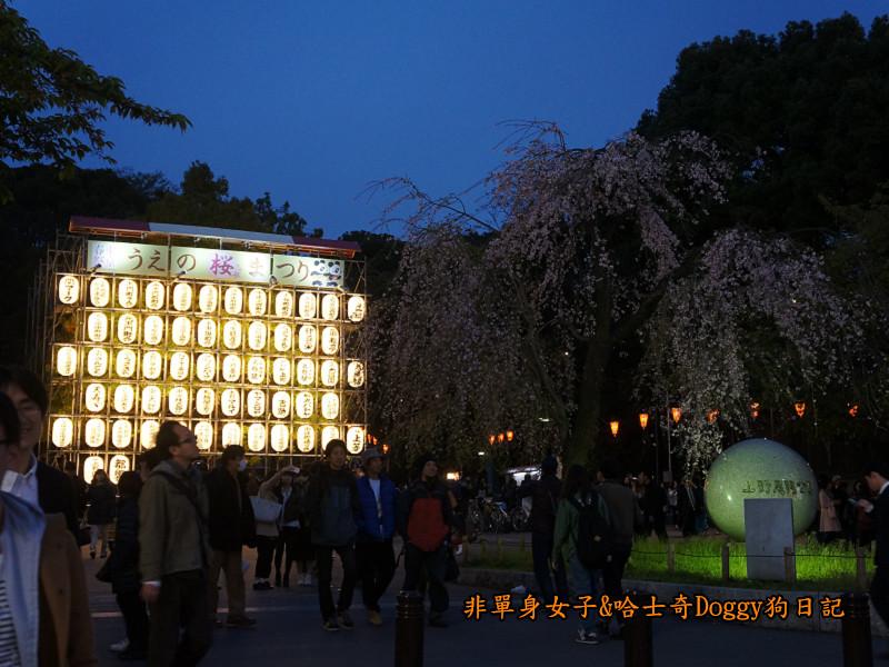 日本東京上野恩賜公園櫻花20