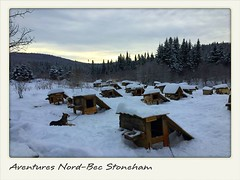 Aventures Nord-Bec Stoneham | ★★★★★ My very first time dog-sledding and it was amazing! You actually drive (?) the sled the whole time and it is quite an experience. Plus, the people there are so nice and friendly. Highly recommended if you want the full