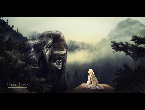 • Kong •