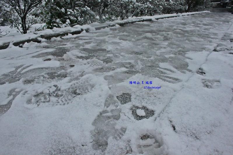 2016-台北陽明山-瑞雪-難得一見的雪白山景-17度C隨拍 (30)