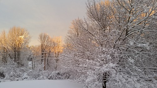 Snow in New England ©LapdogCreations