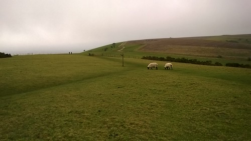 On the South Downs Way - above Kingston not Kington