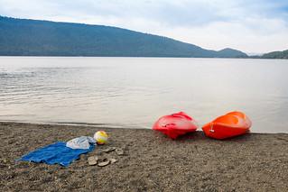 Image of Icalma. chile beach lago playa laguna lonquimay araucania icalma