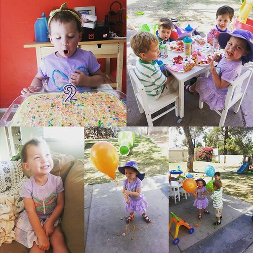 Lou's birthday party two years old 3/15/2016