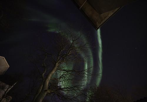 Aurora Borealis over Reykjavik,Iceland
