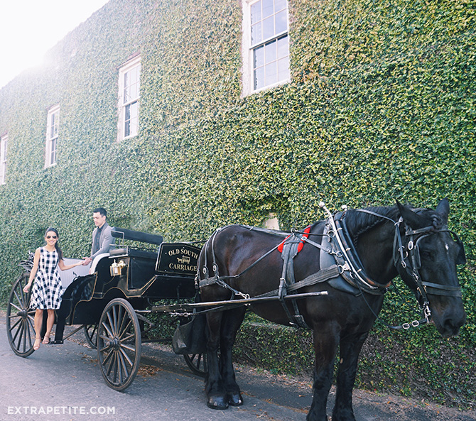 What to do in Charleston South Carolina_Horse Carriage Tour