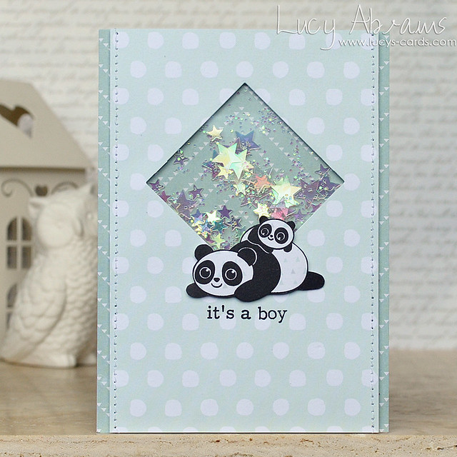 Panda Baby by Lucy Abrams