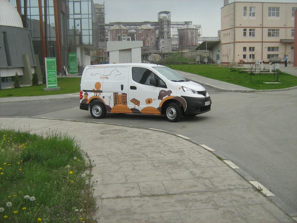 Lupul_Electric (3)