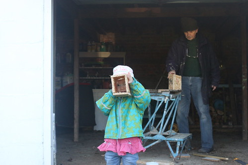 Making bird boxes with Granddad