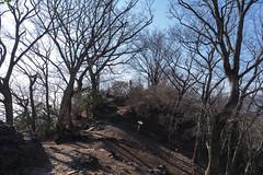 伊豆ヶ岳山頂・・・閑散としてました