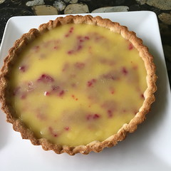 Lemon and Cranberry Tart Tart