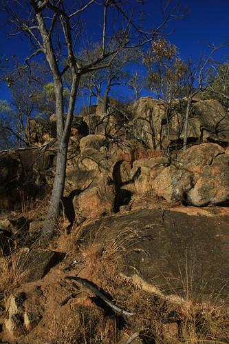 澳洲昆士蘭Undara Experience-火成岩地景-20141117-賴鵬智攝-3