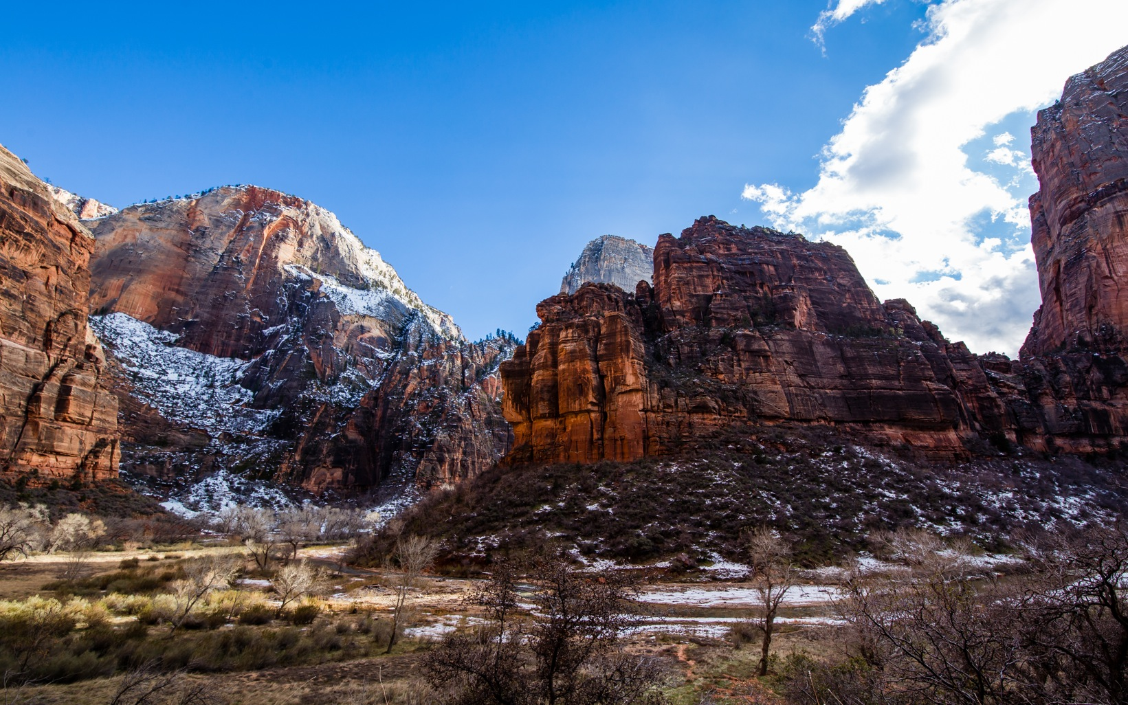 Zion National Park-9371
