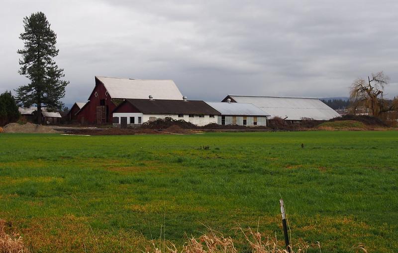 Rural Arlington