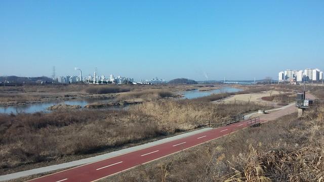 공릉천 관찰일기-봄기운 가득한 산책길