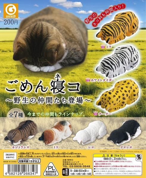 Shine-G 趴睡貓 「野生的朋友篇」逗趣現身!