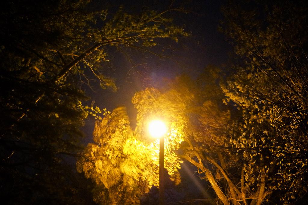 82. night lights