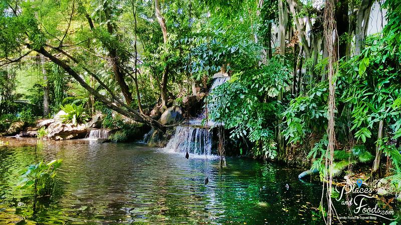 swissotel nai lert park waterfall scenery