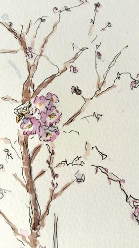 pen ink watercolor sketch