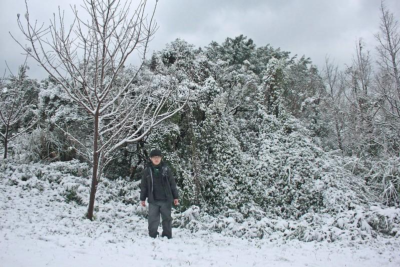 2016-台北陽明山-瑞雪-難得一見的雪白山景-17度C隨拍 (64)