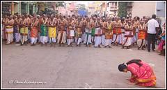 5895 - Sri Parthasarathy temple Bramotsavam 2016 series 11