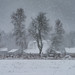 Farm Snowstorm by Adam Woodworth