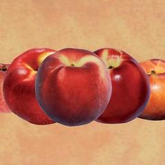 peaches-0000