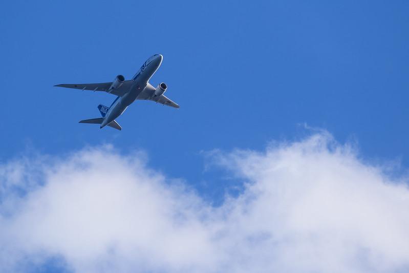 JA811A ANA 全日空 787-8 Dreamliner