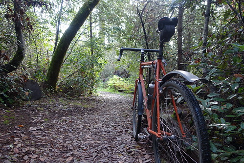 Saturday Singletrack