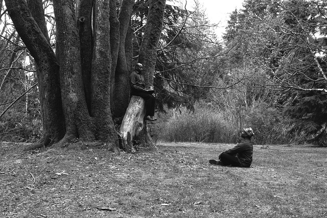Week 57 chemo complete: Stanley Park in Black & White