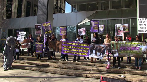Rally for Lucy at Minister Phillips' Office