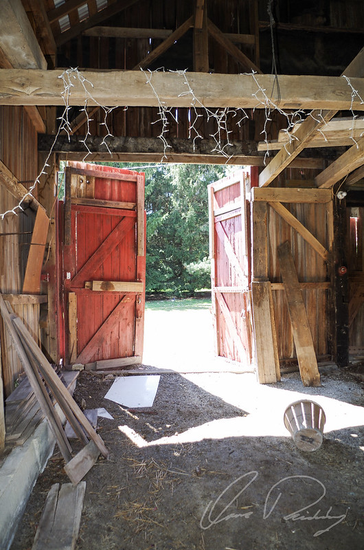 A peek inside of an old 1890's barn