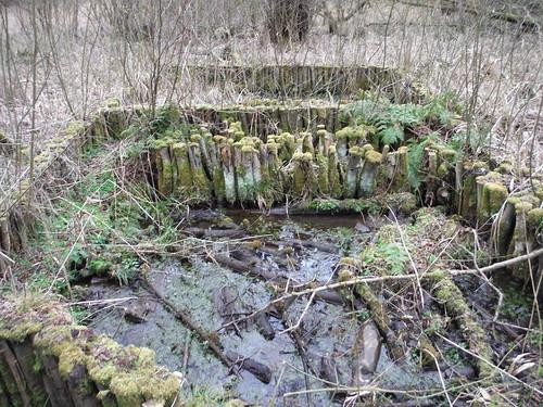 Remnants of Peat Extraction Works, Flitwick Moor