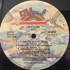 SKYY:SKYY LINE(LABEL SIDE-B)