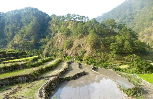 P16-Luzon-Bontoc-Banaue-route(26)