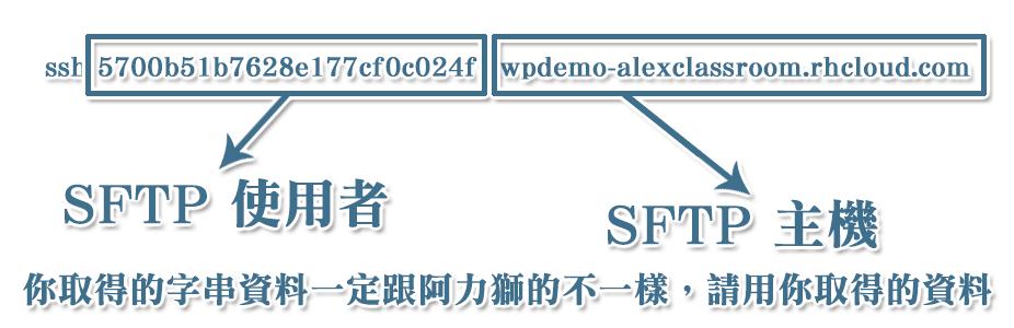 SSH 字串所代表的意義