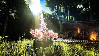ark_plantspeciesx