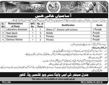 WAPDA Lahore Staff Required