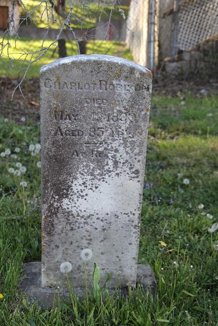 20160424_Lewisburg_Cemetery_039