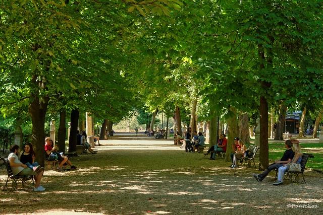 Rome : Pincio / Sitting in the shade