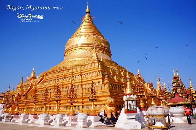 Bagan - Shwe Zigon Zedi
