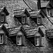 wooden rooftop in B&W by Fr@nk 