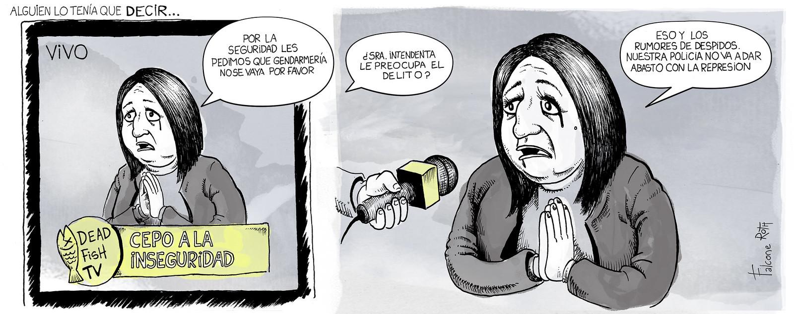 seguridad intendenta Mónica Fein
